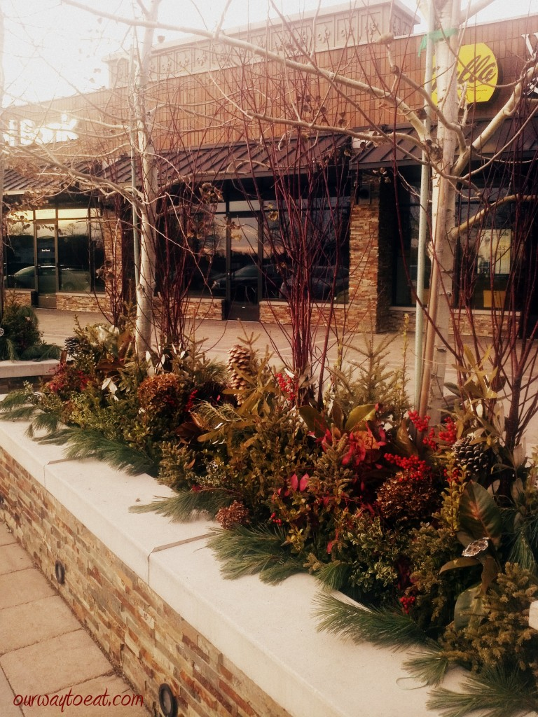 Seasonal Planters Outside the Galleria in Edina
